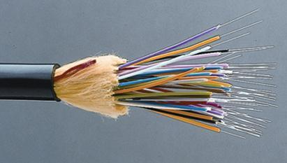 Optical Cable Jumps on Fiscal 2Q Report